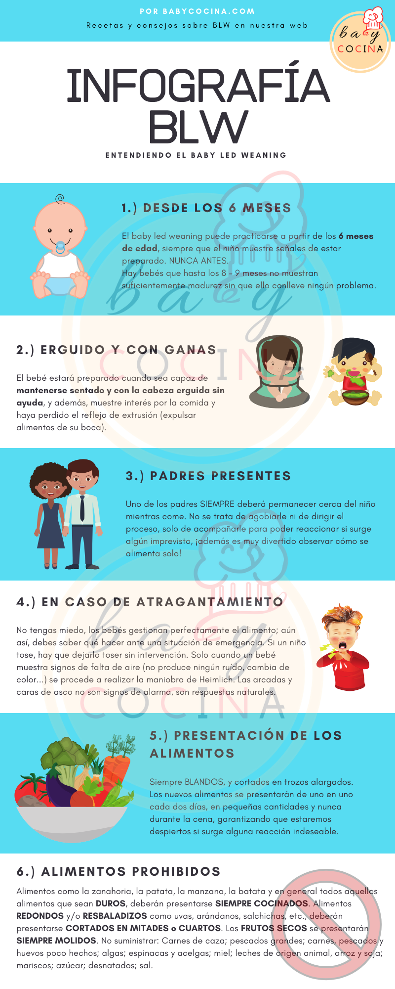 Infografía BLW por BABYCOCINA