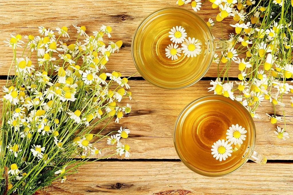 Infusión de Manzanilla | 🔴 Cómo preparar y Propiedades del té de Manzanilla