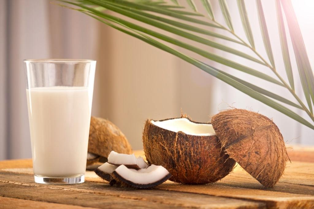 Leche vegetal vegana de coco