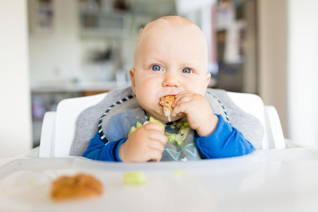 Hamburguesas para Bebés BLW | 8 Recetas: Lentejas, Garbanzos, Pollo, Boniato, Espinacas…
