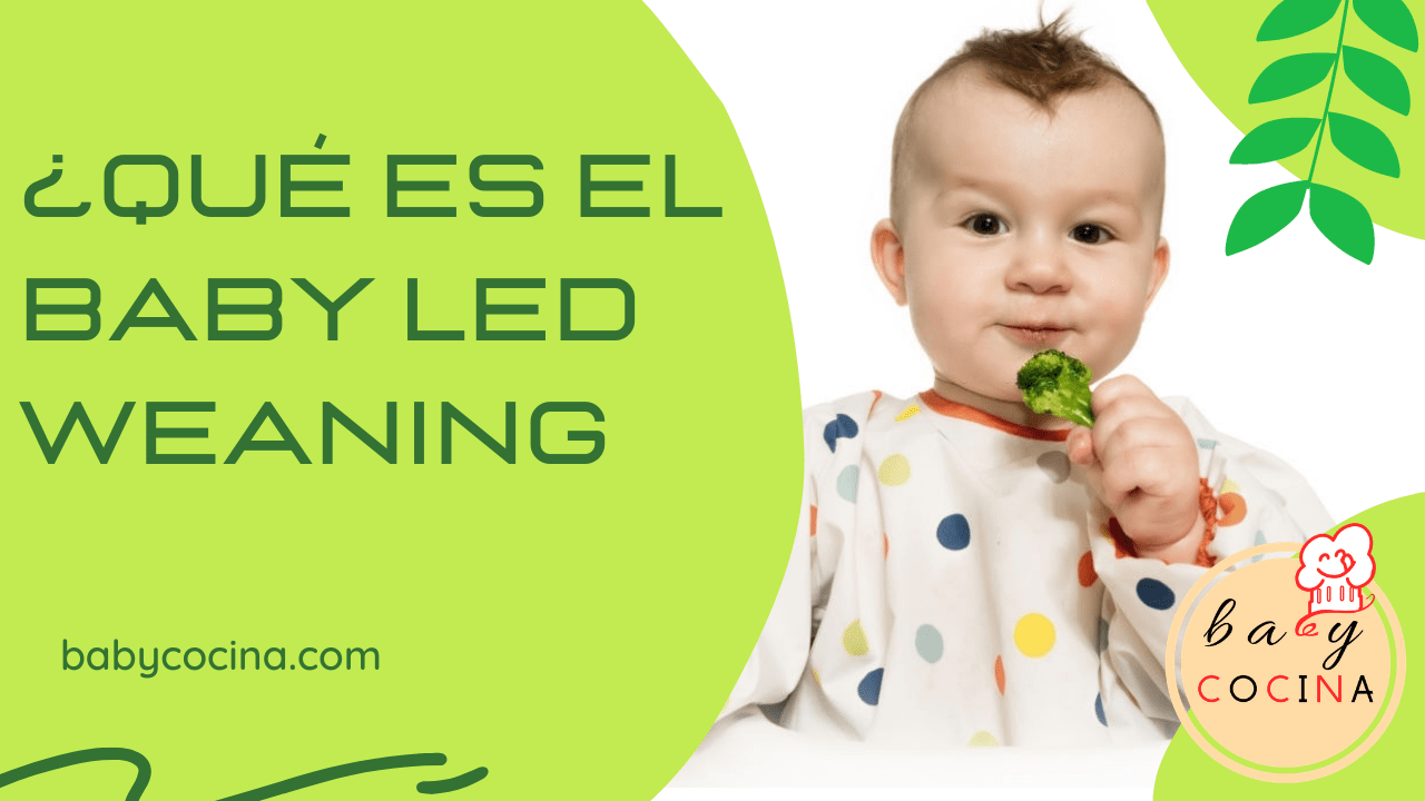 baby led weaning que es