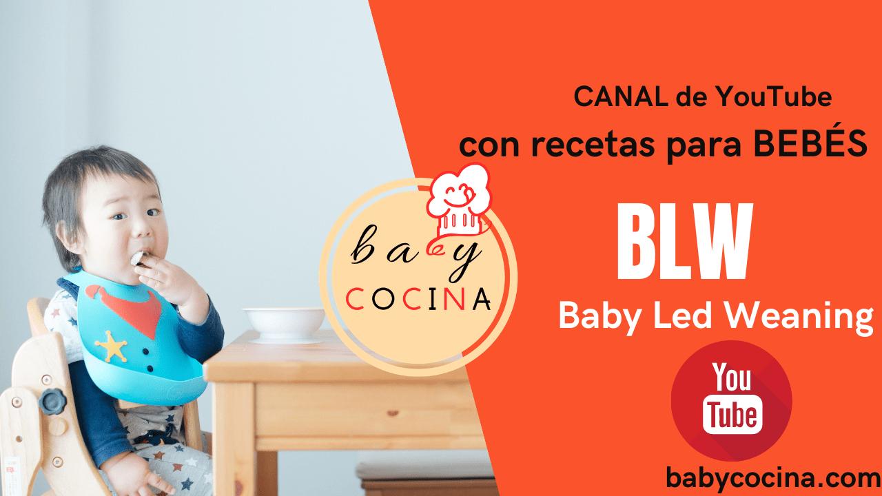 recetas blw youtube