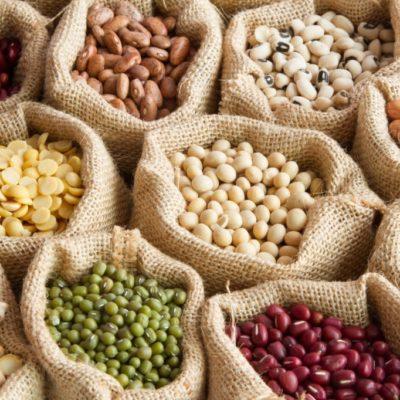 Alimentos proteína vegetal