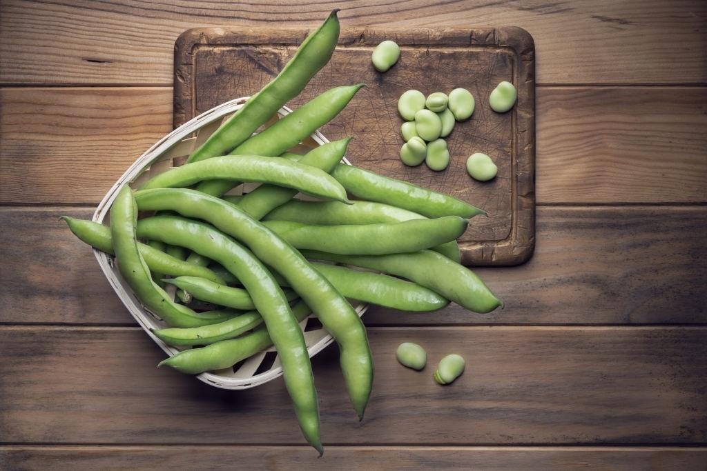 proteina vegetal habas
