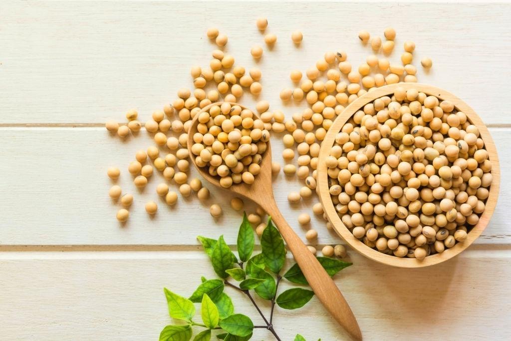Proteína vegetal soja
